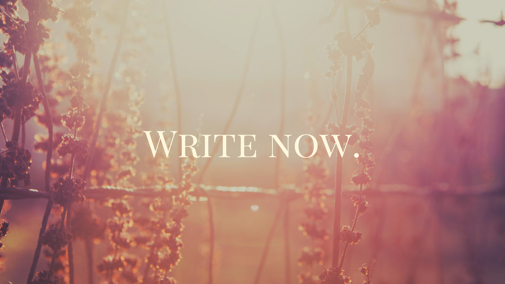 Do you need someone to keep you accountable in your writing? -