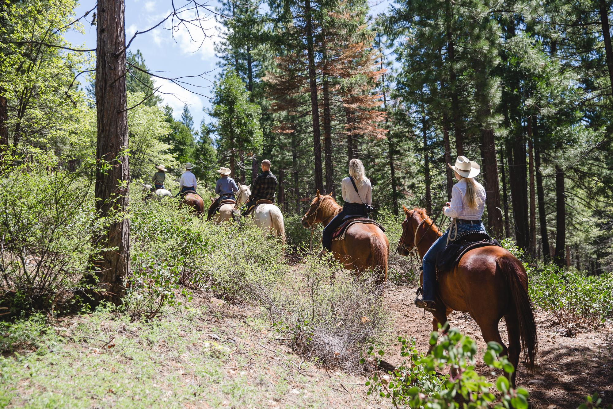 Fun on Greenhorn Ranch Trails