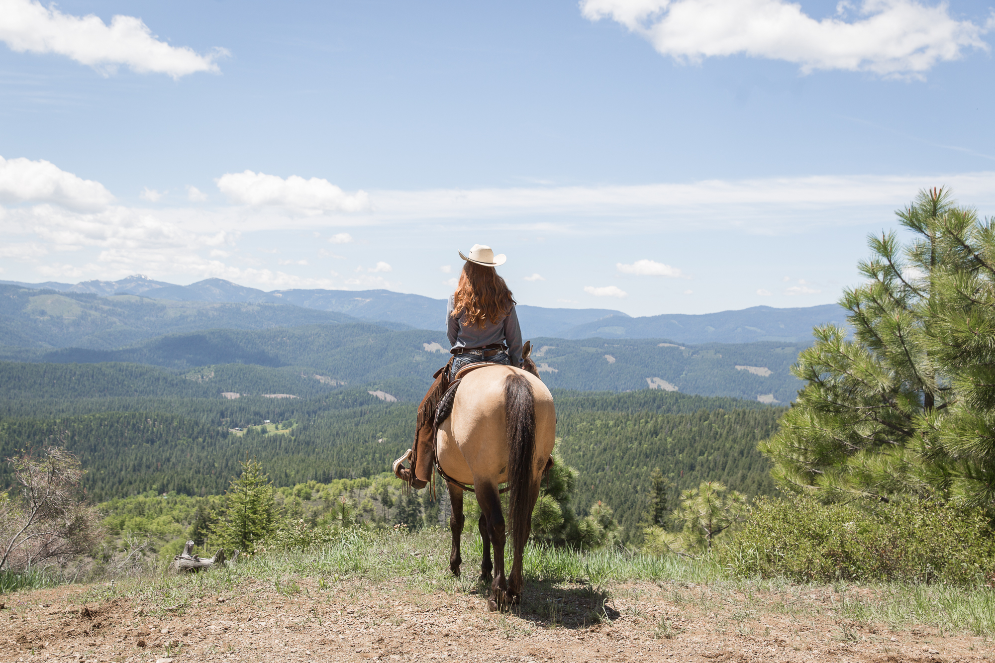 Mountain Trails at Greenhorn Ranch
