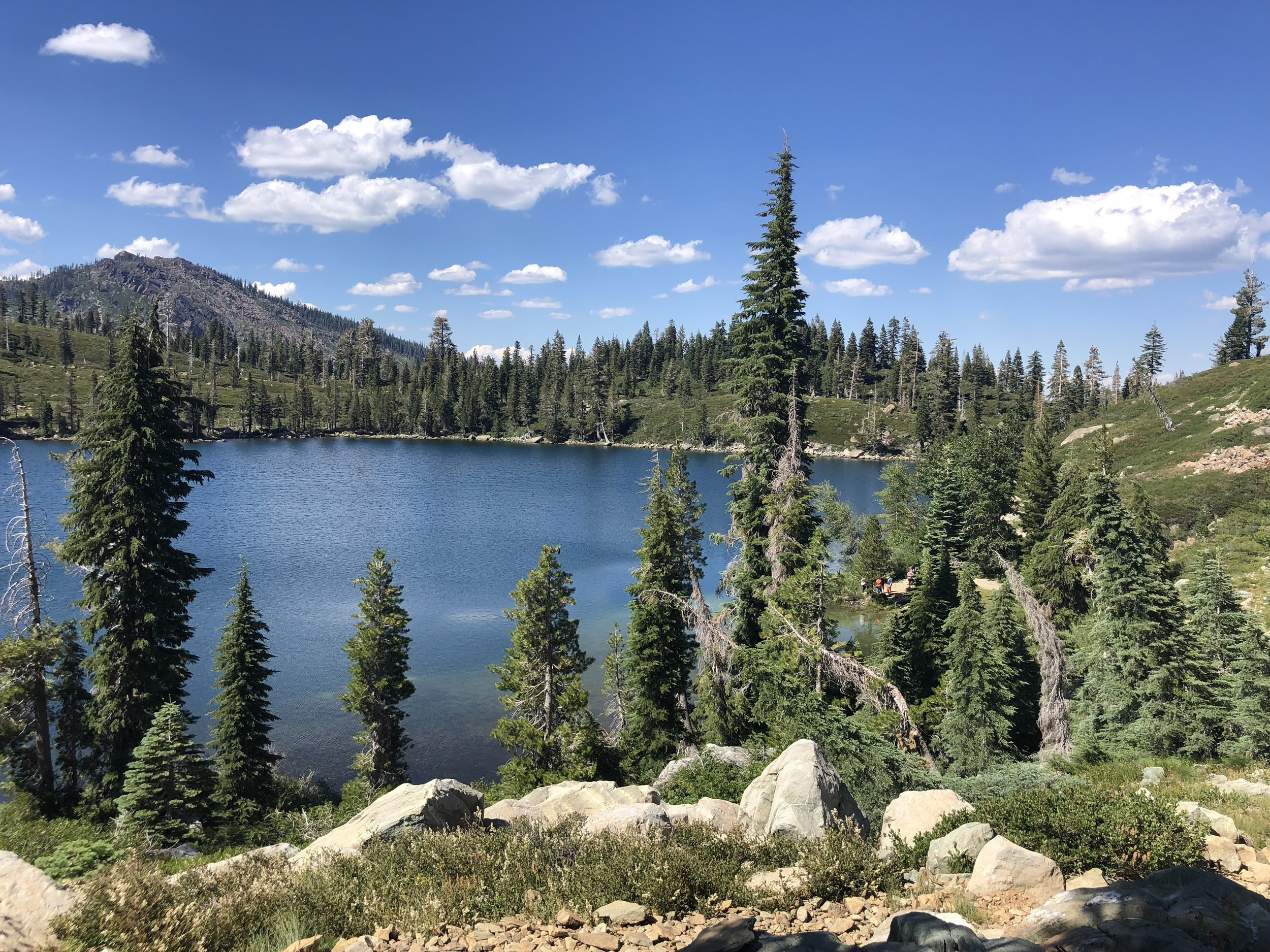 View from Round Lake Loop Trail