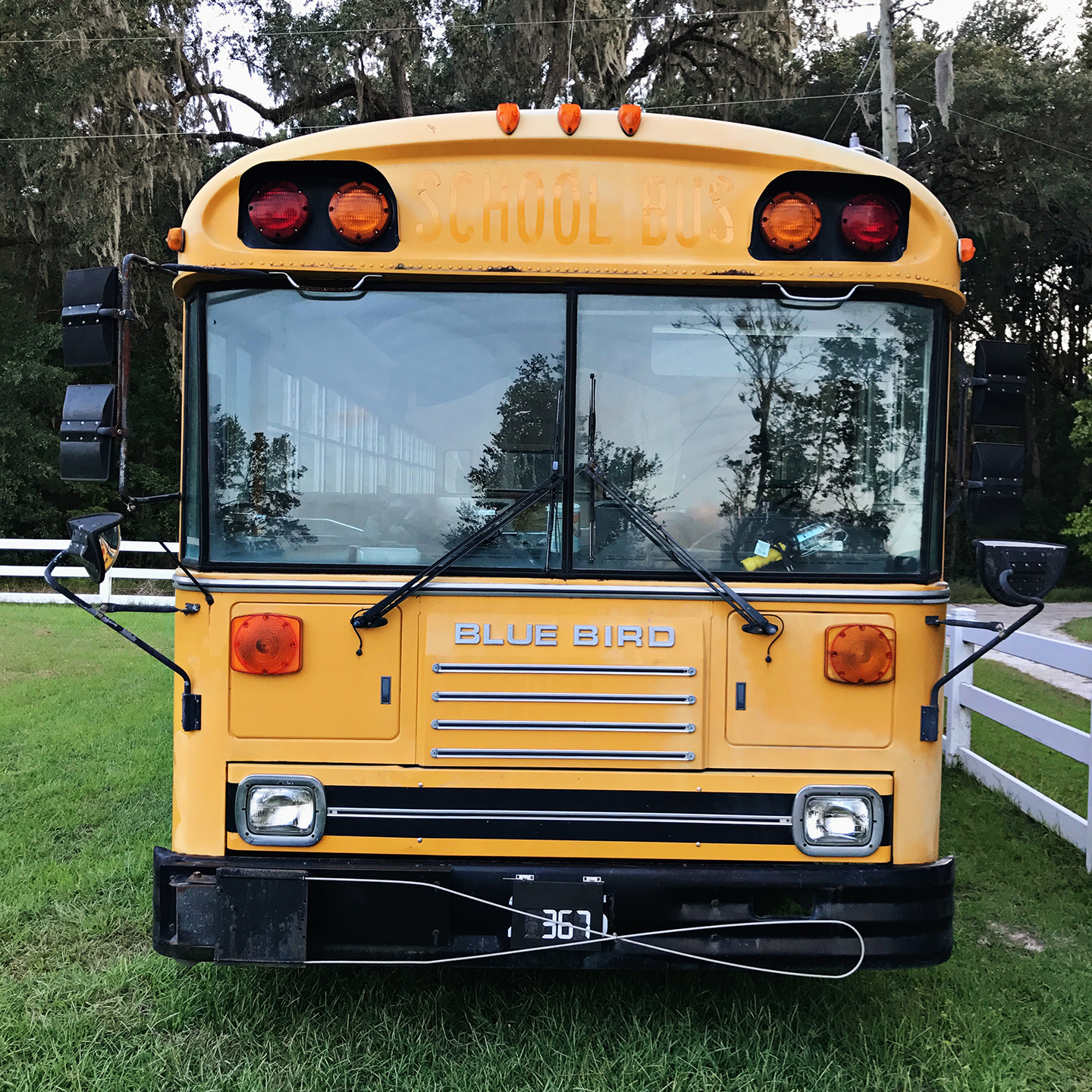 about the bus. - The Pigeon Bus is a 1993 Blue Bird TC2000. For the mechanically inclined souls, it's a rear engine Cummins 5.9 TA with just over 43k miles. It was an elementary school bus and probably drove less than 10 miles a day for its entire career.It was won at auction for $1,400.For more information about the bus, click here.