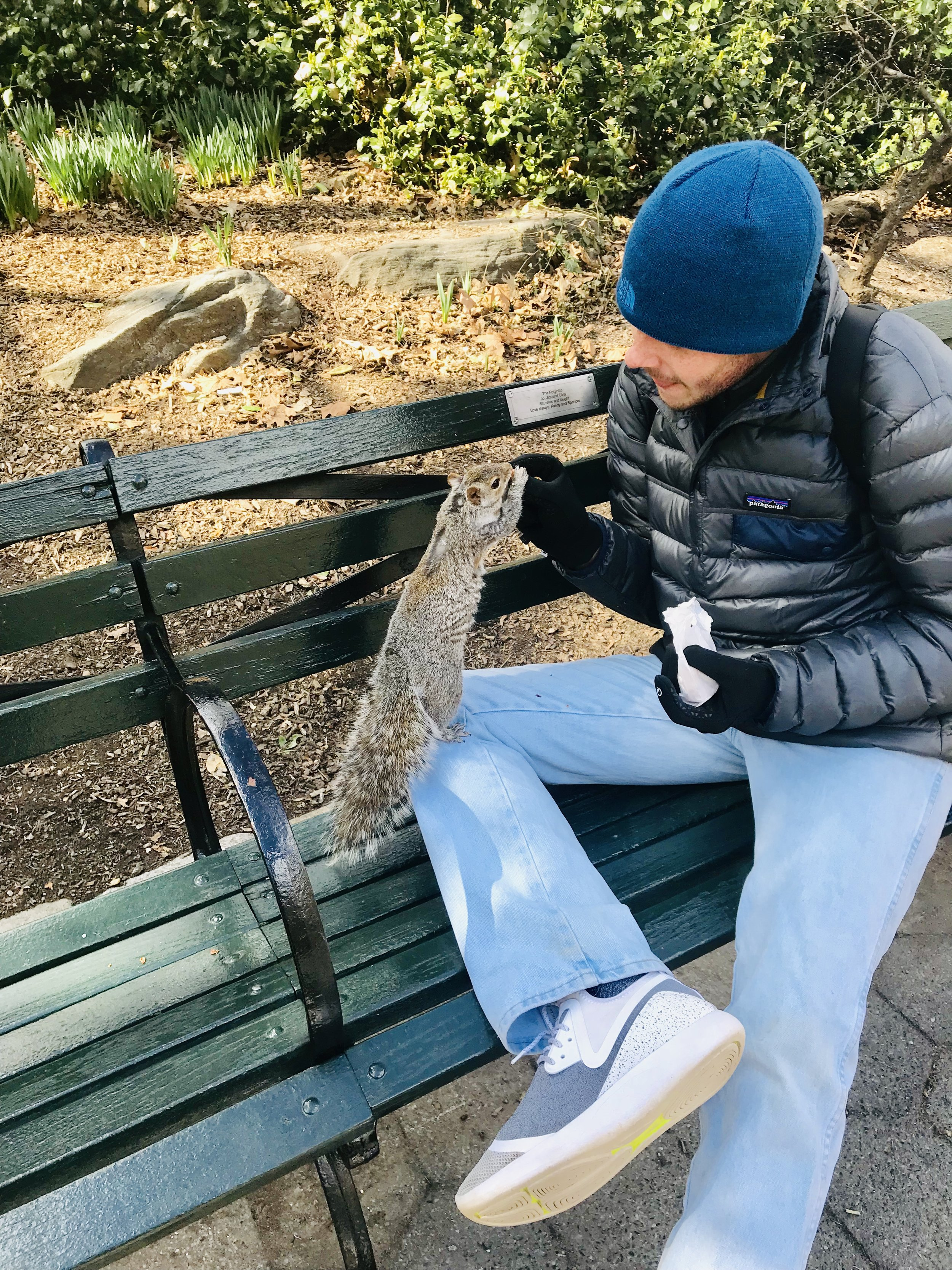 the Central Park squirrels LOVE to be fed!