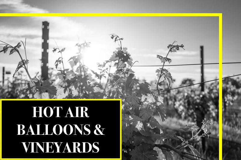 Float over the Vineyards.jpg