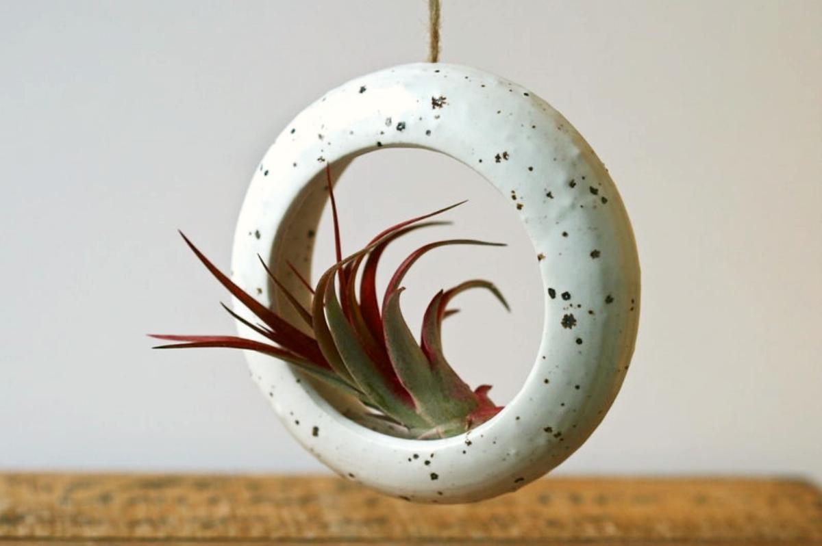 O Ring Planter