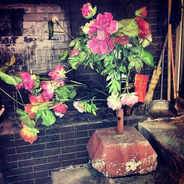 dungeon flowers.jpg