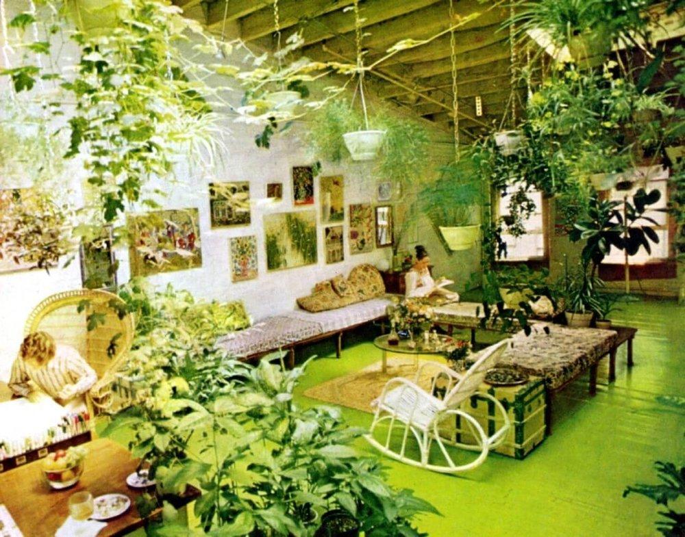 1970s house plants.jpg