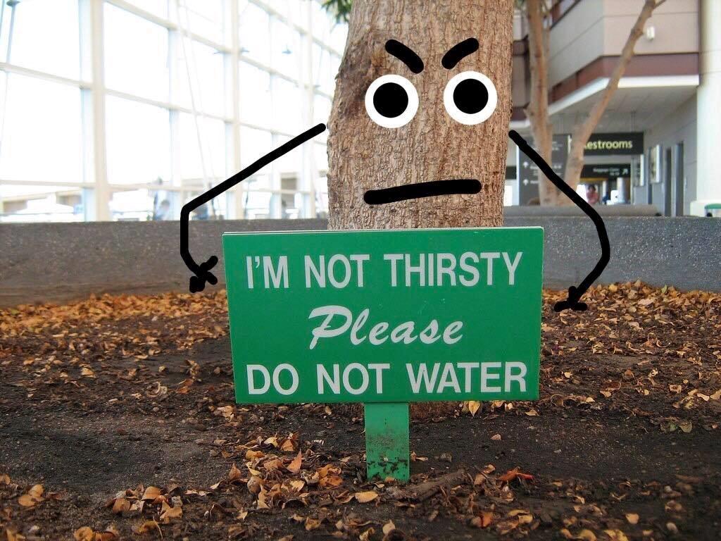 not thirsty.jpg
