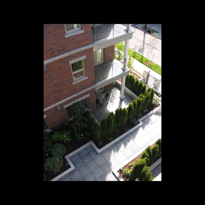 Harvard 009.jpg