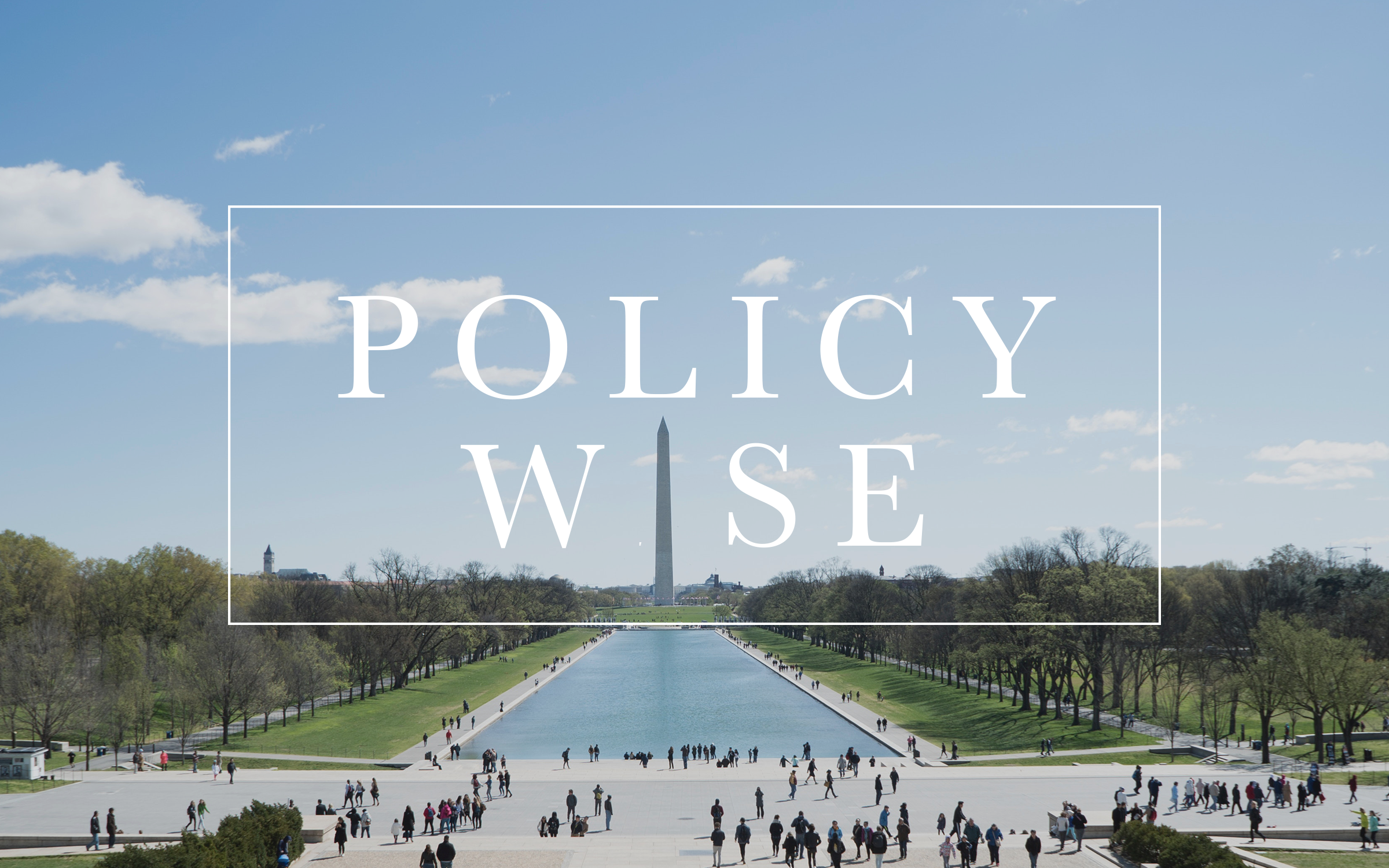 Policy Wise Button.png