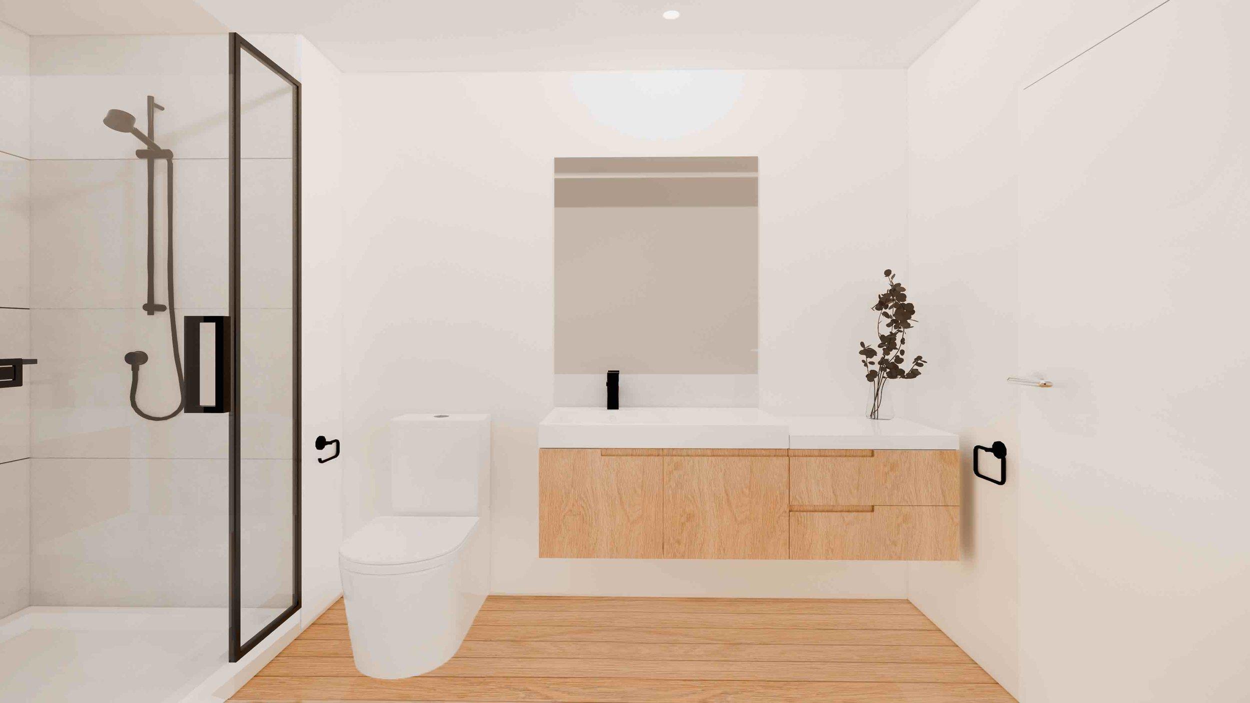H713_Tuam Street - Laneway - Bathroom.jpg