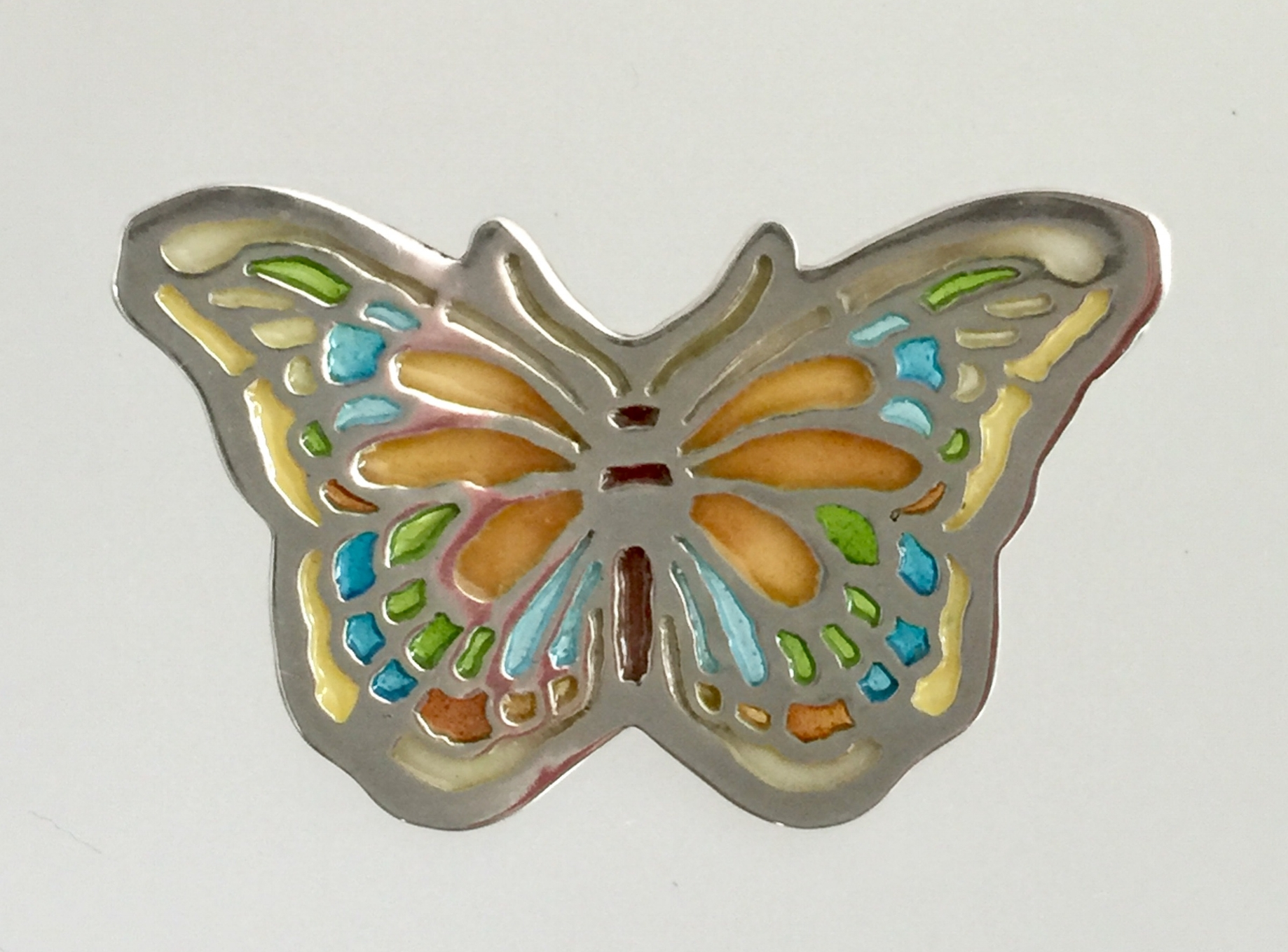Colorful Butterfly (Moth)