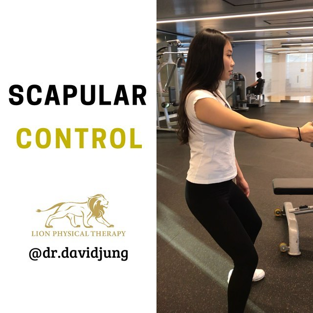 EASE YOUR SHOULDER PAIN WITH THIS SCAPULAR EXERCISE . Having solid control of your scapula is super important to having a healthy shoulder. If you like to exercise with your arm overhead 🧗🏻‍♂️🏋🏻‍♀️ or in front of you⛹🏻‍♂️🚴🏻‍♂️, then this is the exercise for you. . Scapular retraction is performed with a 1️⃣ Straight elbow  2️⃣ Movement isolated to your shoulder blade moving forward and back . Resist the urge to bend your elbow! 💪 If you can maintain proper core bracing along with good breathing 💨 control, you are on your way to a healthier shoulder! _ ⭐️Like if you want to see more⭐️ _ 💬Comment if you have questions or want to see a specific topic💬 _ 👍Share with your friends who may benefit from this post👍 . . #physicaltherapist #personaltraining #physiotherapy #physicaltherapy #fitness #fitnessmotivation #health #nycfit #longislandcity #nyc #strong #mobility #flexibility #movement #shoulderstability #personaltraining #movewell #prevention #climbing #bouldering #brooklynboulders #brooklynbouldersqueensbridge #thecliffsatlic