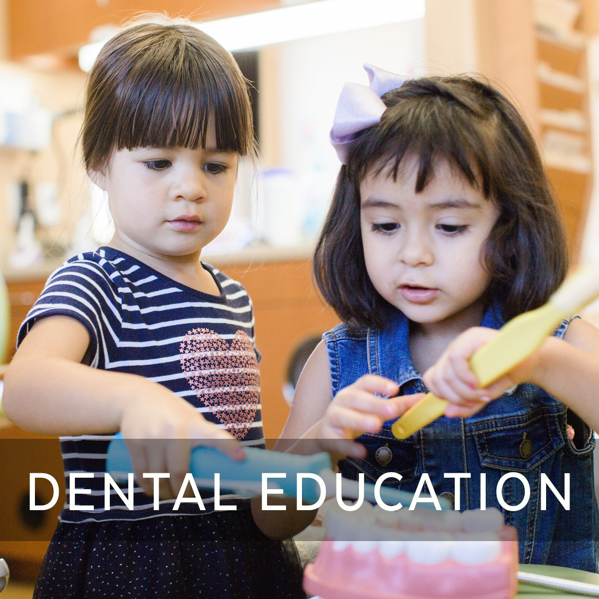 DENTAL EDUCATION.jpg