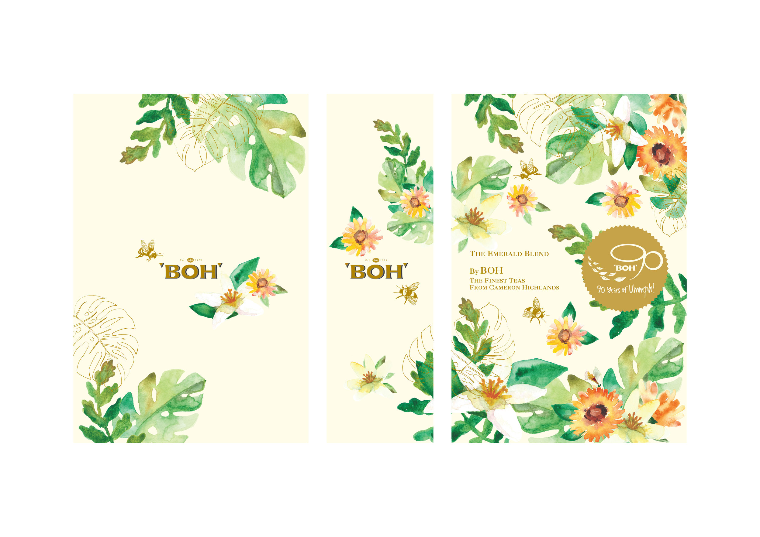BOH tea box design