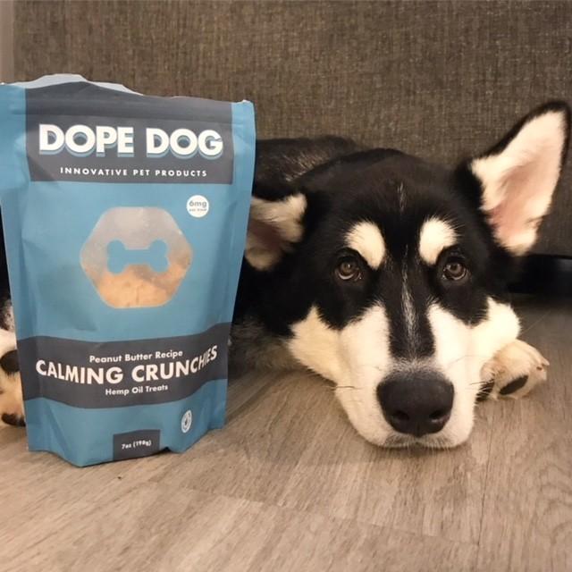 Visit them at: https://dope.dog/
