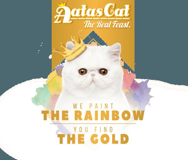Aatas+Cat+Rainbow.png
