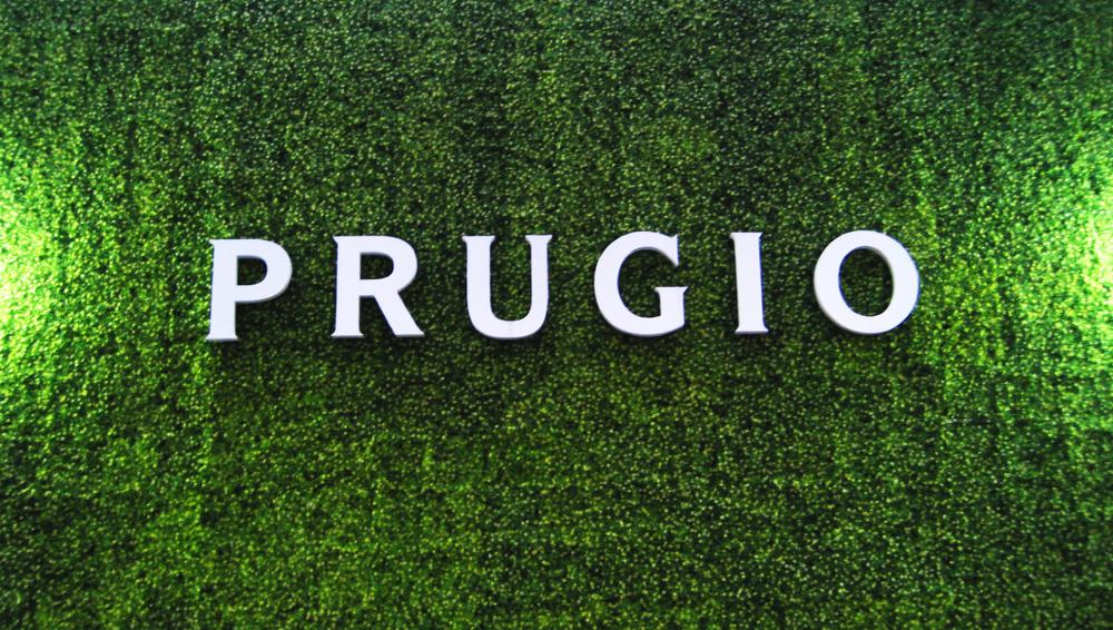 prugio_04.png