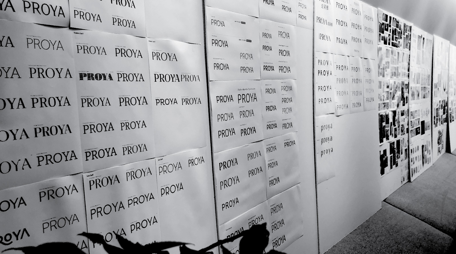 proya_03.jpg