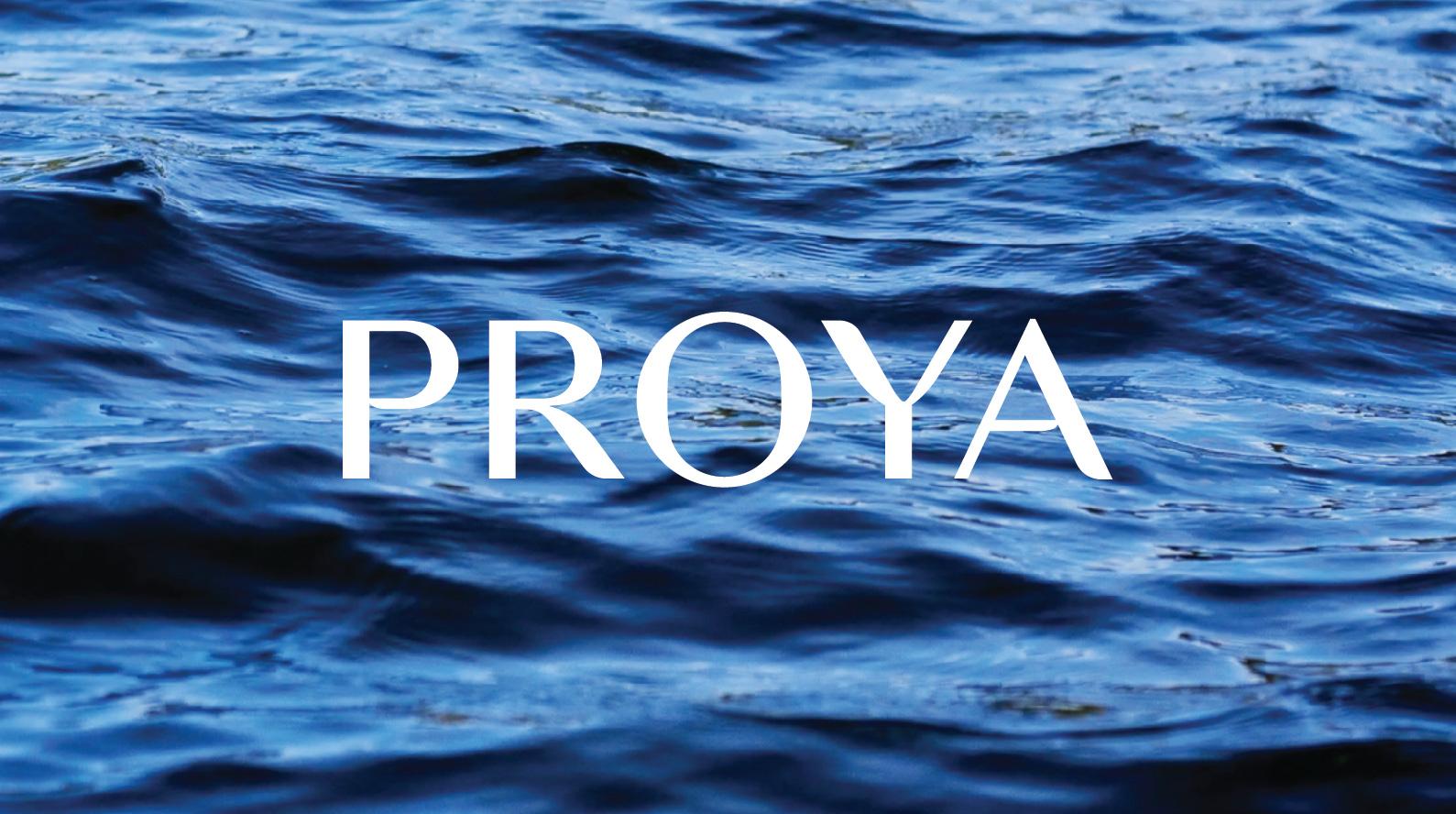 proya_00-4.jpg