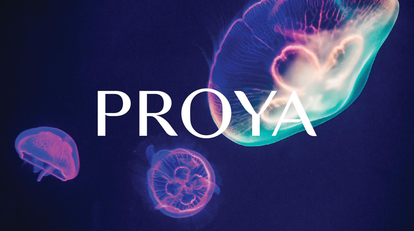 proya_00-2.jpg