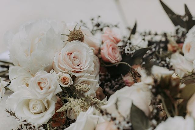 Calling all Winter Weddings!  We are offering free bridal bouquets for every winter wedding booked in with us in the next week! So, if you are marrying between May 1st and November 1st please get in touch. This offer is valid until 4th March 2019, a $1500 minimum spend applies.  Tag all your winter wedding friends to let them know ✨