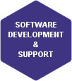 Software Development & Support