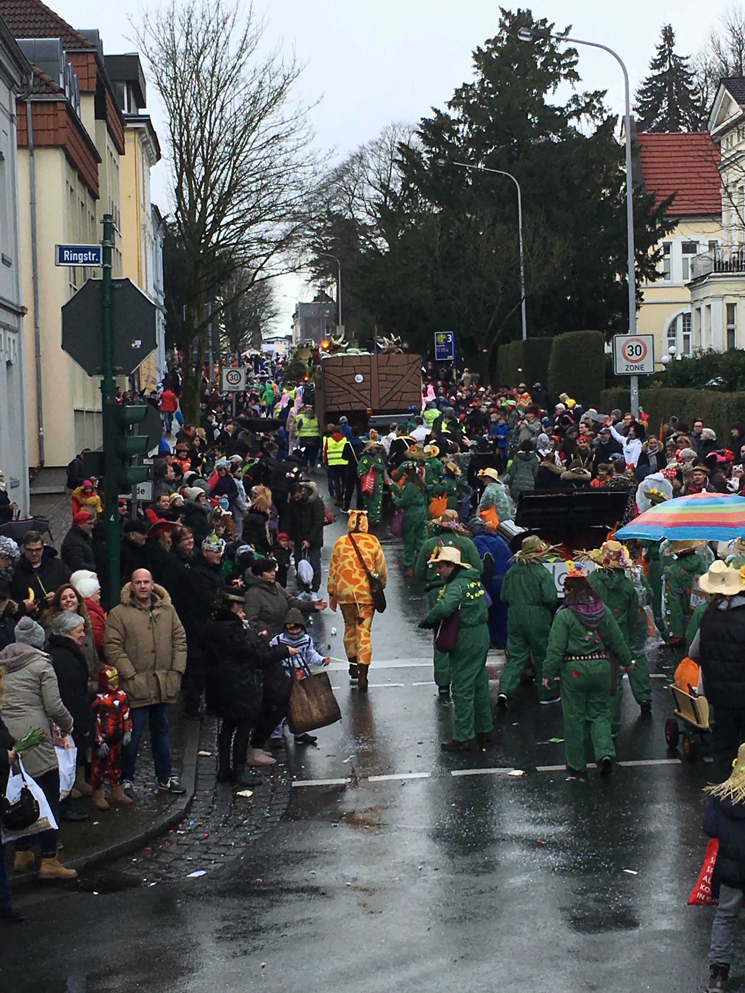 karnevalsumzug (45).jpg