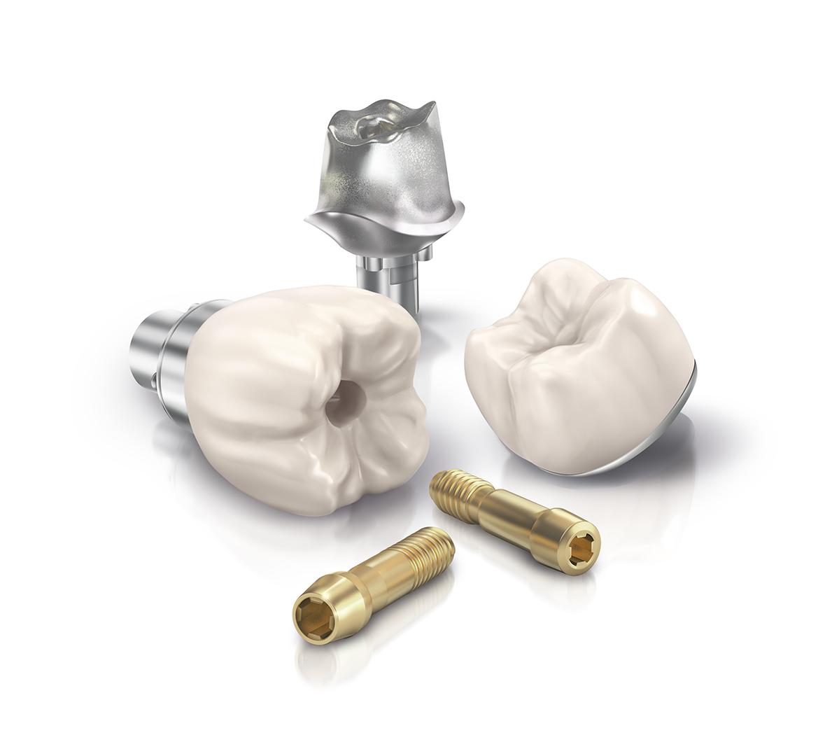 PD174_IdeaSeed_Dental_WIP 4.jpg