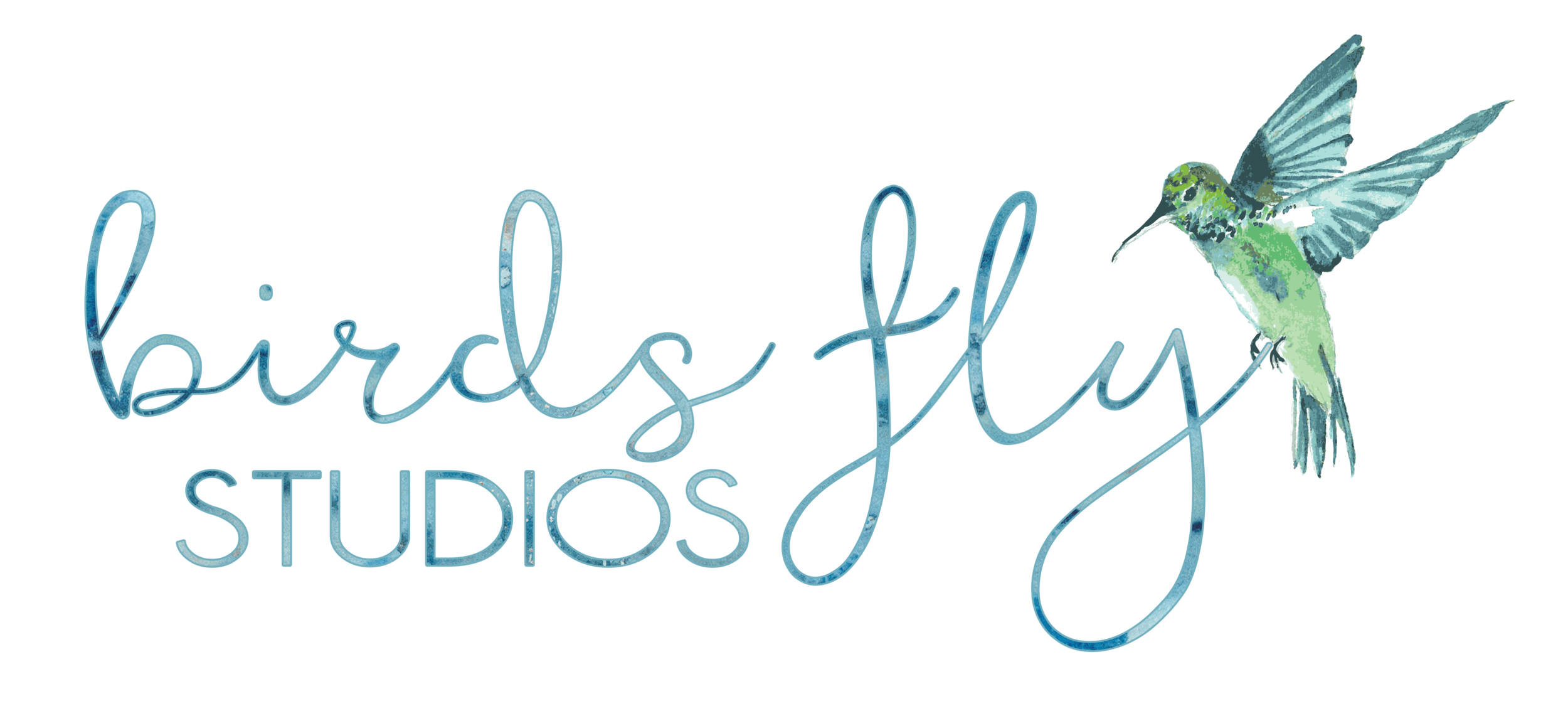 Birds Fly StudiosLOGO_2016.png
