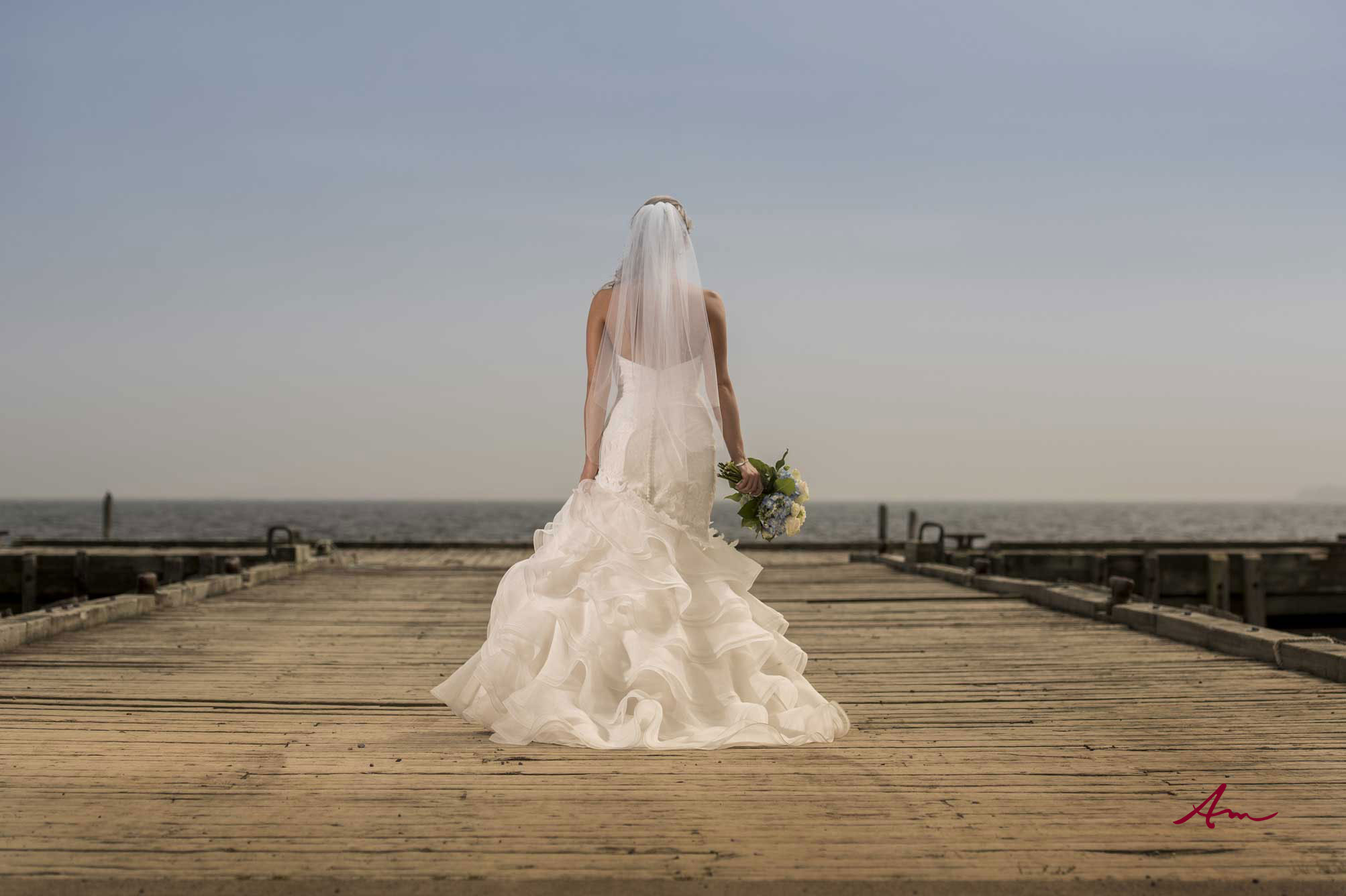 Liscombe-wedding-bride-dock.jpg