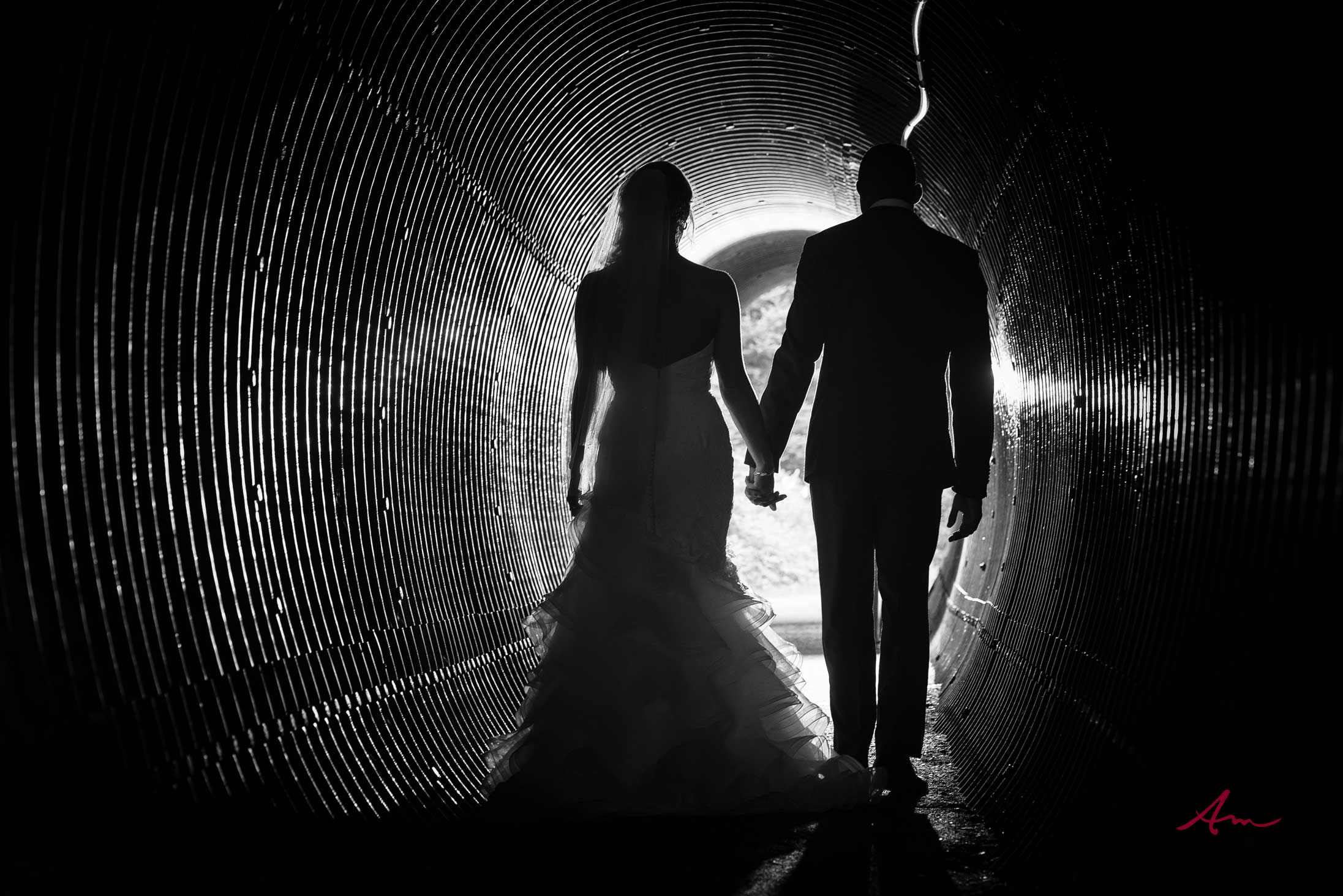 Liscombe-wedding-bride-groom-tunnel.jpg