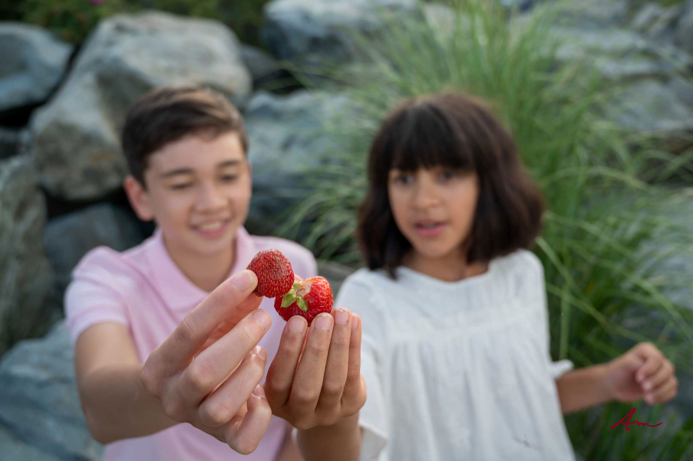 You know the stars have aligned when your session corresponds with strawberry season in Nova Scotia!