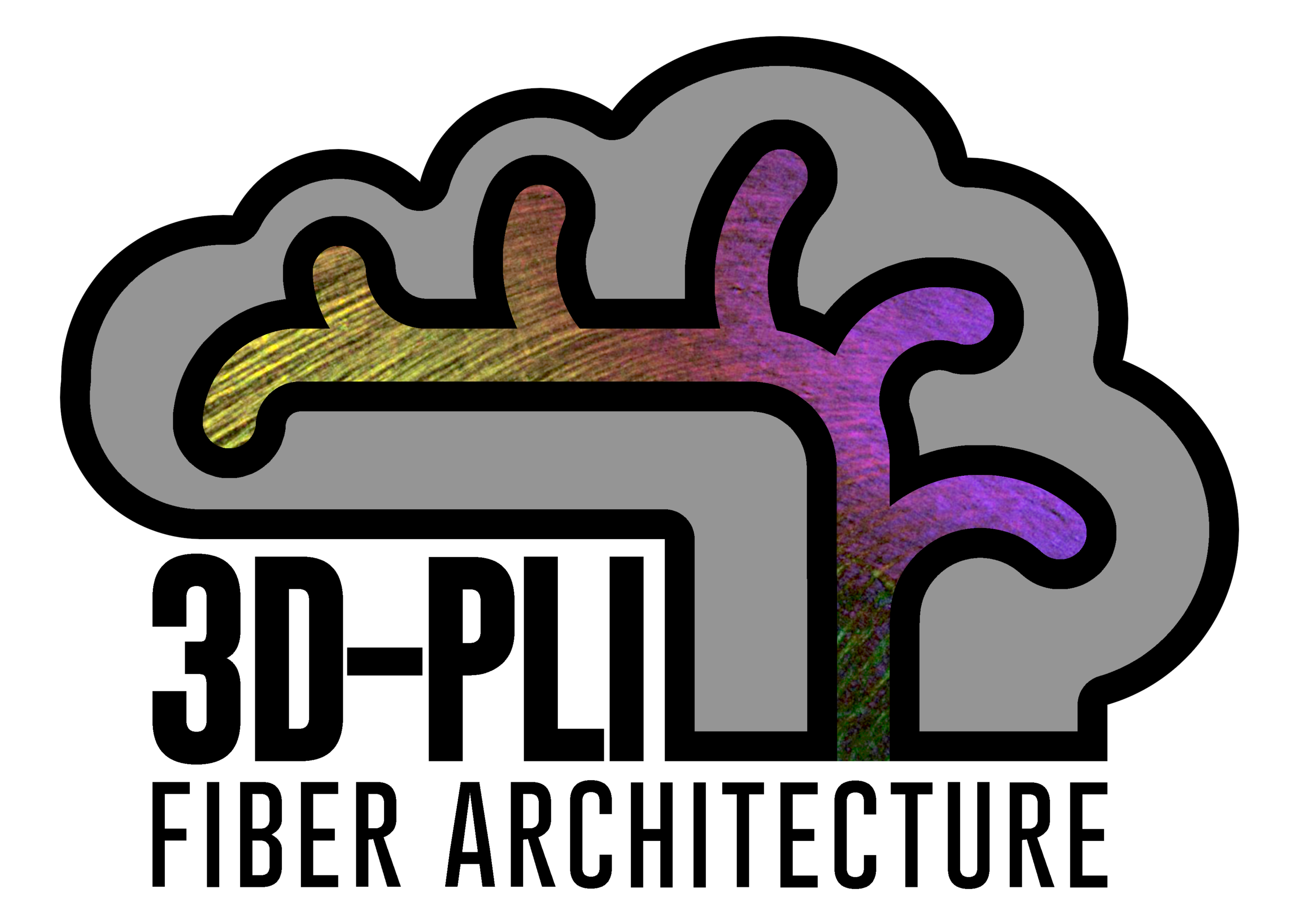 Logo_FiberArchitectureGroup_MarkusAxer_INM1_FZJuelich.png