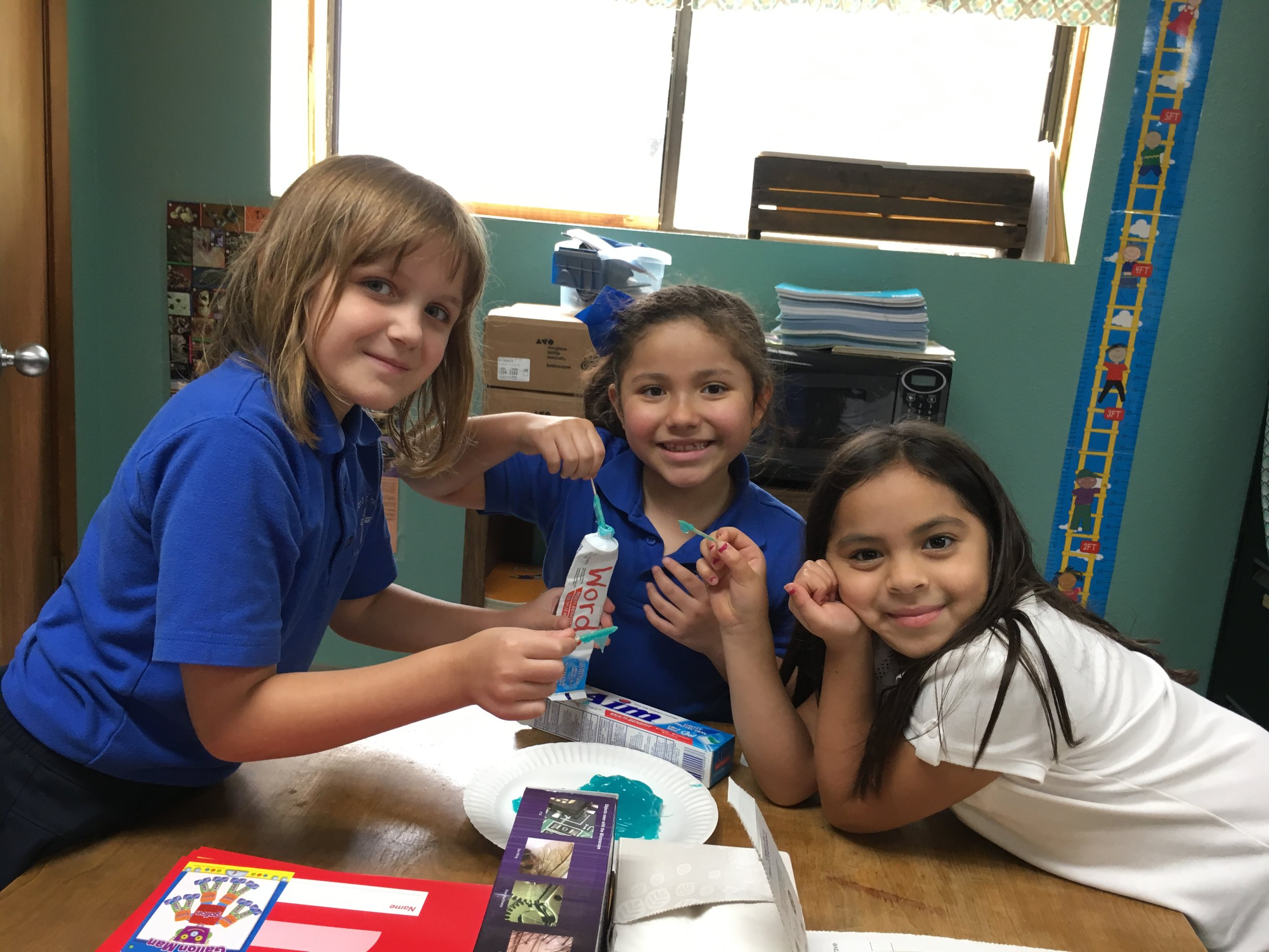 Elementary (Prek-5) - A variety of curriculum that exceeds TEA standards is utilized by our students, including but not limited to: One Life in Christ, McGraw Hill, Zaner Bloser, Saxon Math, Harcourt and Science Fusion and others. For grade specific information, please reference the class curriculum overview and sample schedule.
