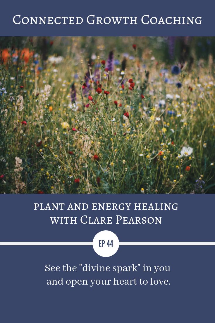 Clare Pearson- Plant Spirit Medicine