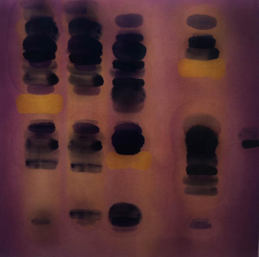 """Endorfin-Analog, 18' x 18"""", 1989"""
