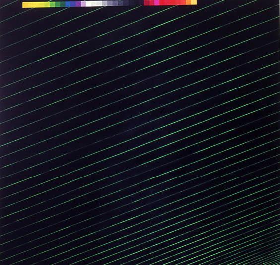 "Black-Chrome Shark, 113 1/2"" x 119 1/4"", 1988"