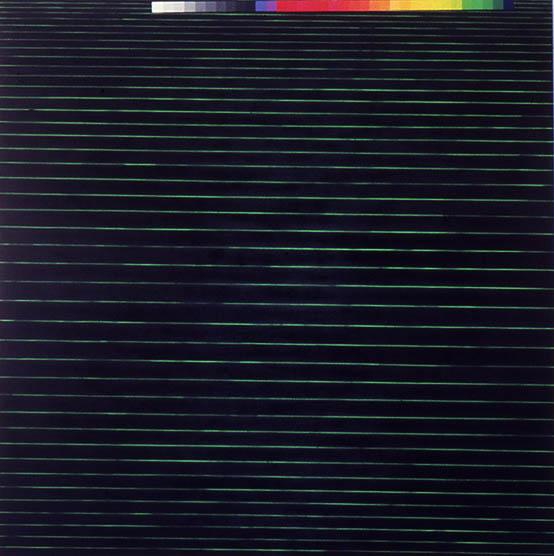 """Neon Chrysanthemum, 113 1/2"""" x 118 3/4"""", 1989"""