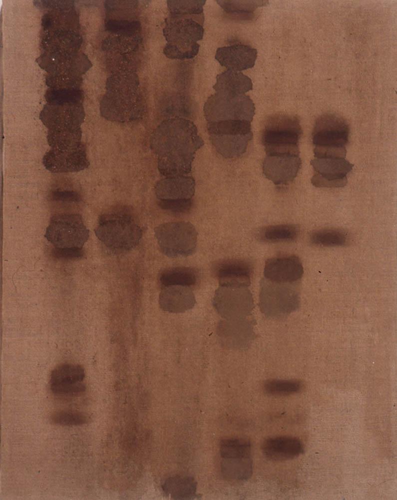 "Radioactive Mud and Rust -  AKA San Clemente, 18"" x 14"", 1996"