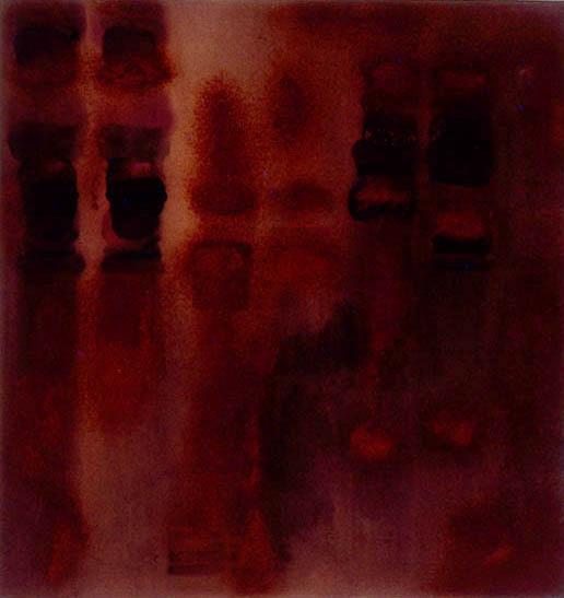 Entropy-Underbelly, 1992