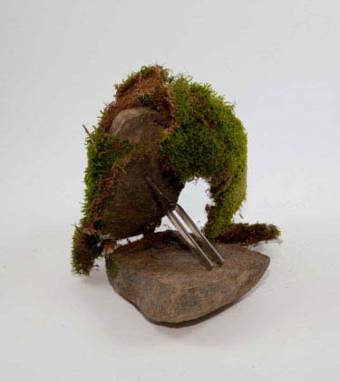 Moss Encrusted Tuning Fork Attractor, 2009