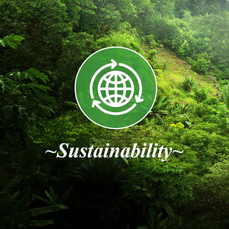 Copyright Studio Diba Salam Ltd 2018 - Core Values_Sustainability.jpg