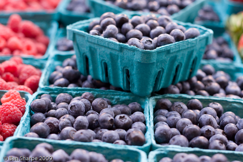 blueberries-at-the-market-1-of-1.jpg