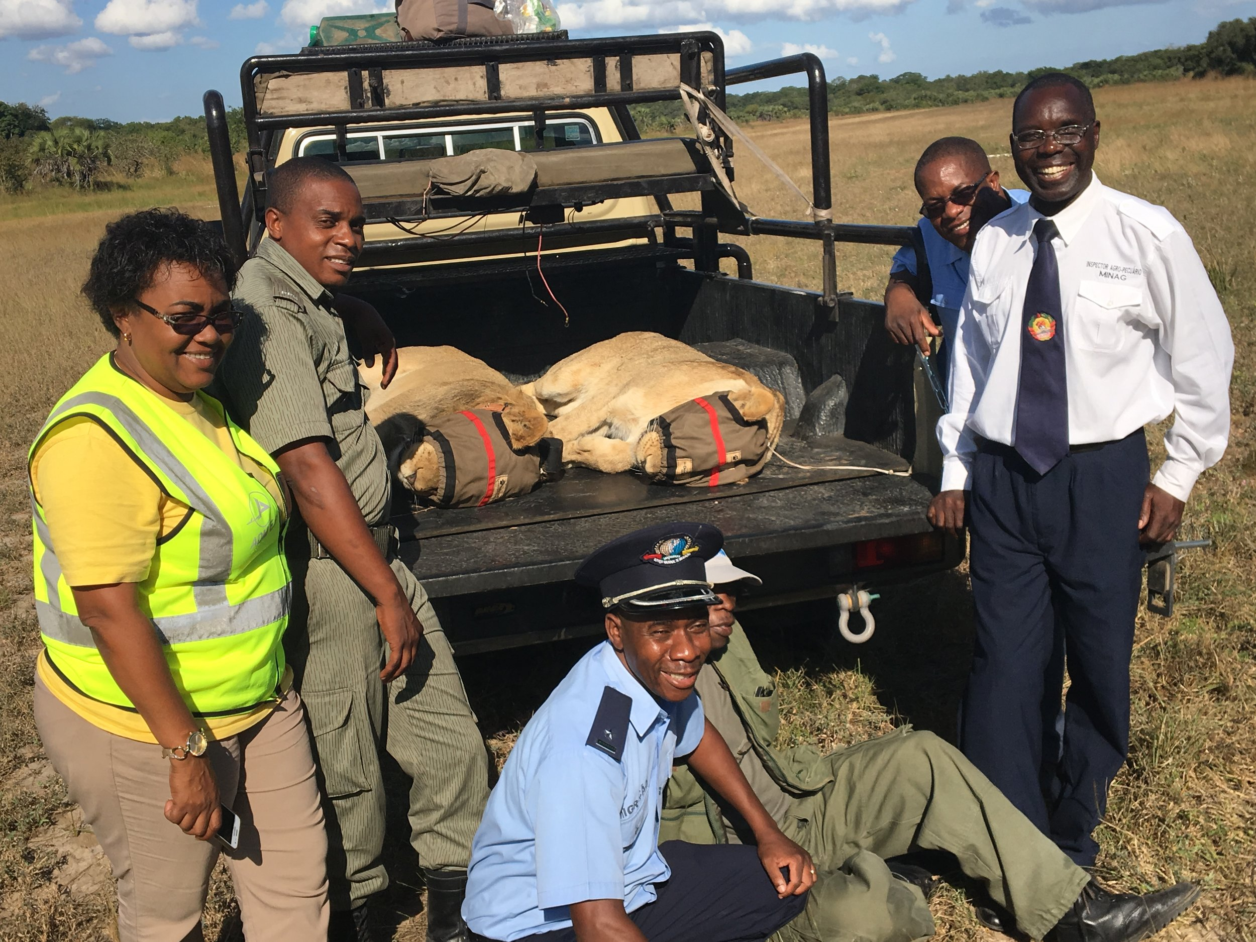 Customs, immigration and the veterinary department smiling and excited to be an integral part of this operation
