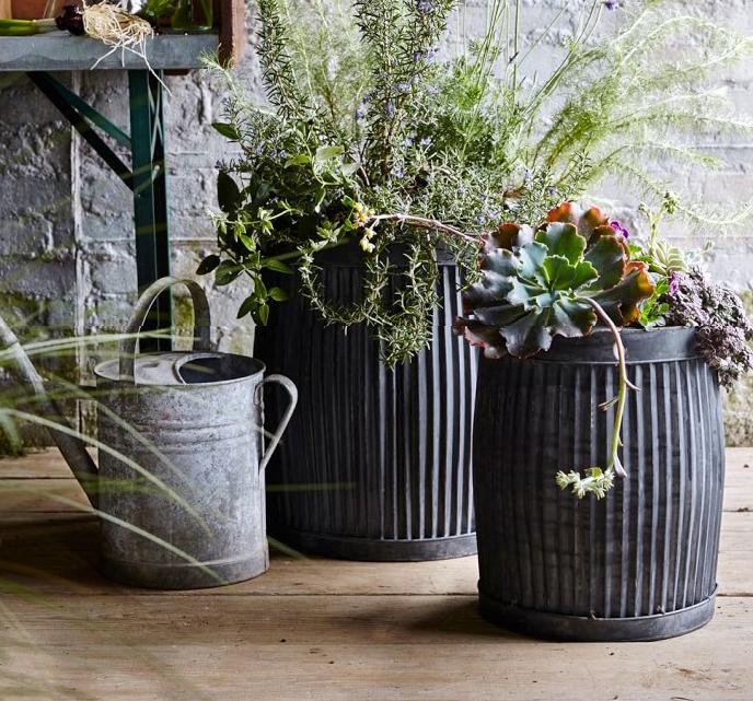 garden-planters-hire.png