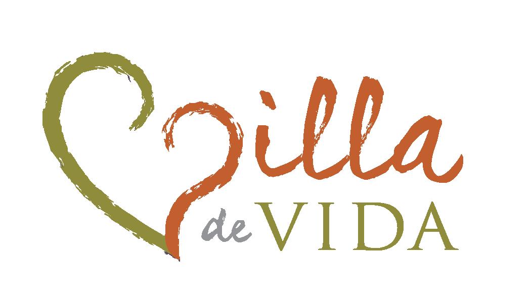 vdv-Logo-1050x600.png