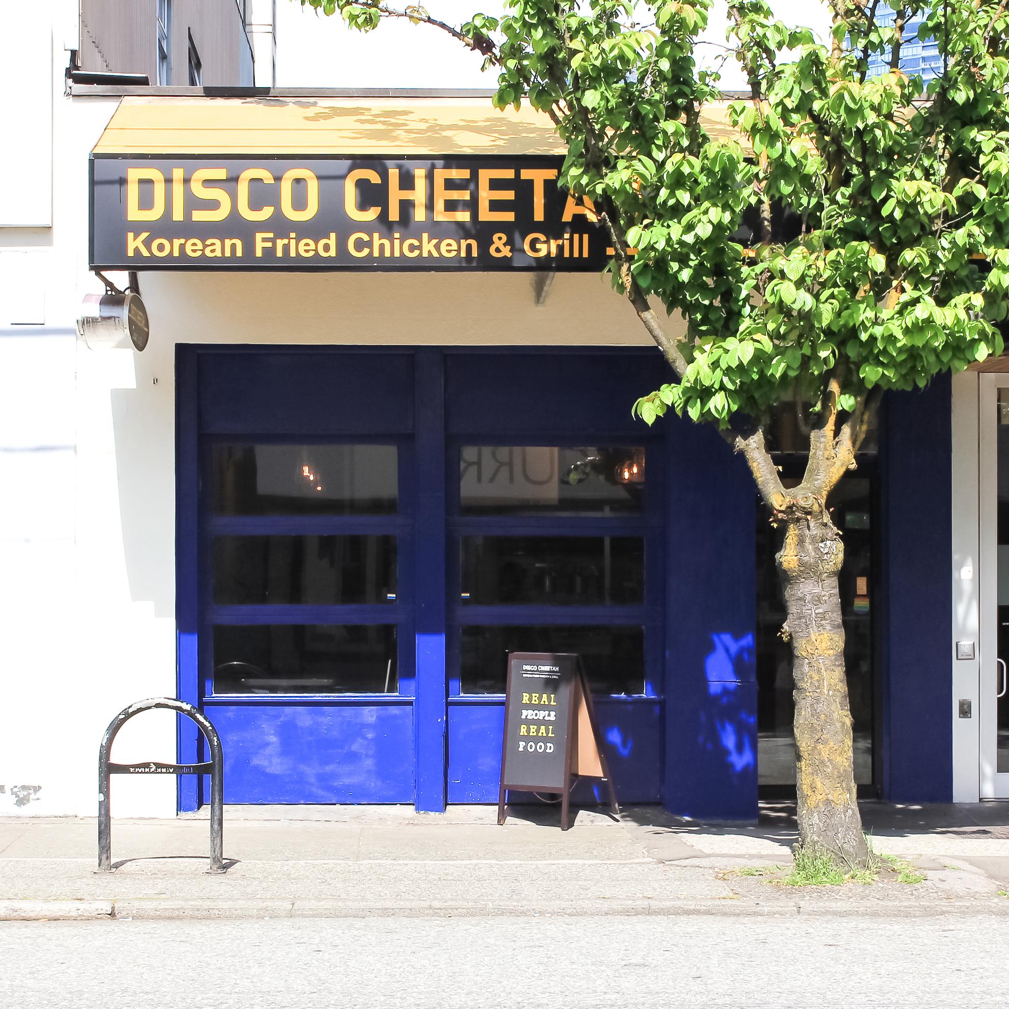 discocheetah-homepage.jpg