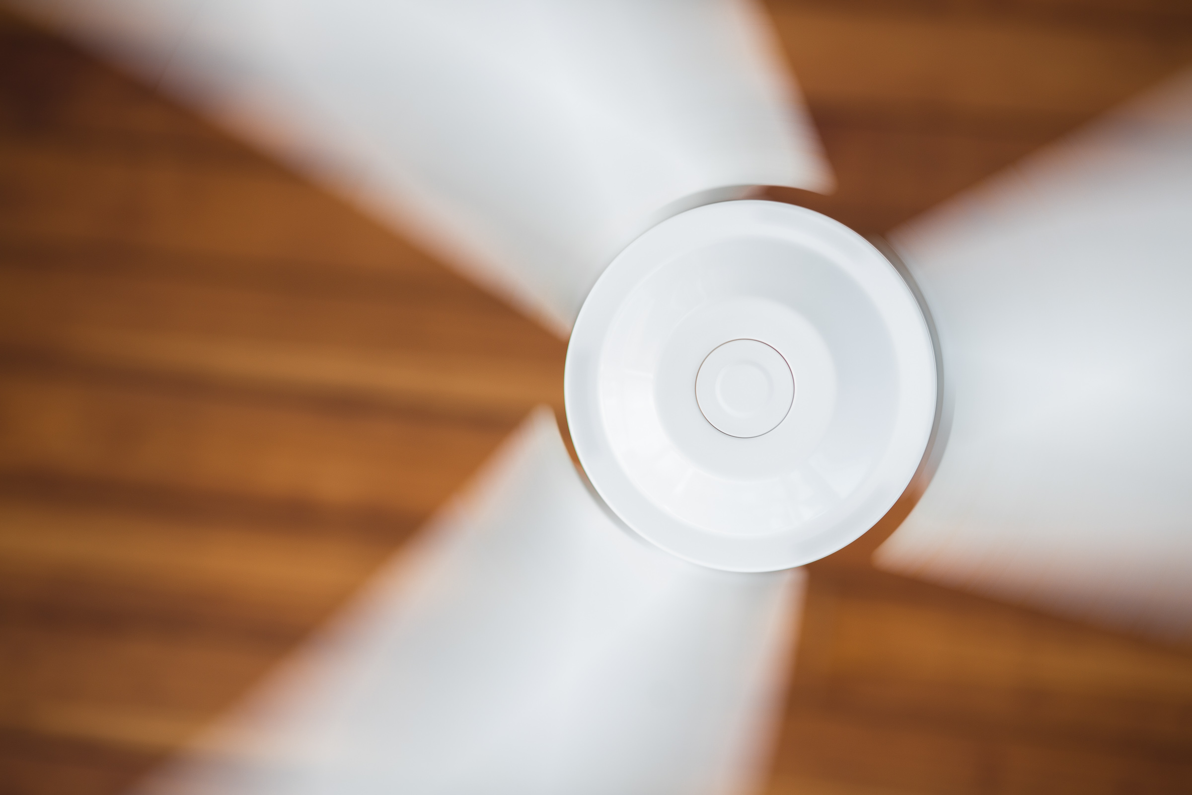 Ceiling fans aren't just for summer cooling!