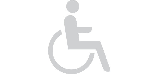 Handicap_access_20grey.png