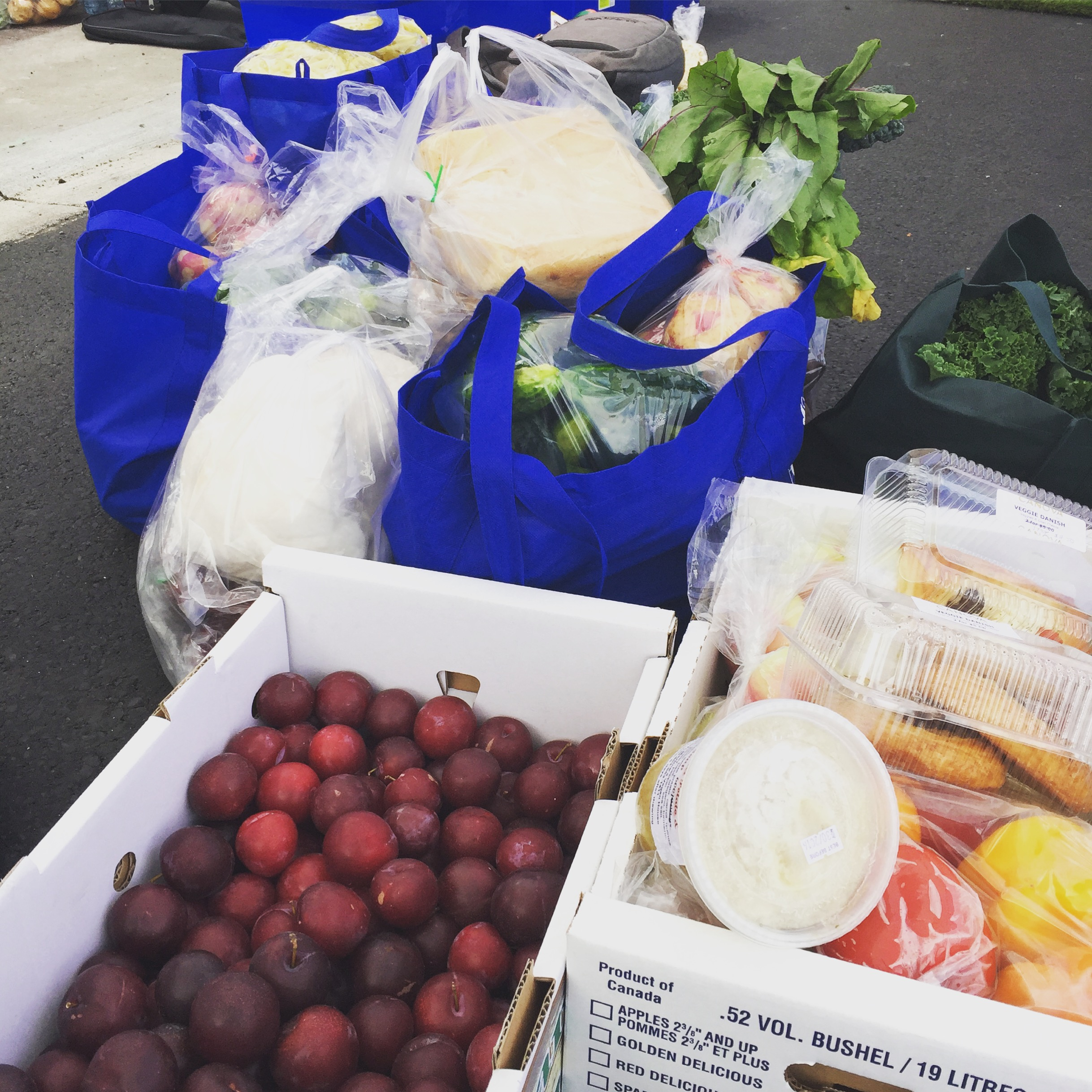 The Market is a proud supporter of the St. Albert Food Bank - Every market day we collect donations for the local food bank of products that would otherwise go to waste. In 2017 we raised over 5,000 lbs of food!